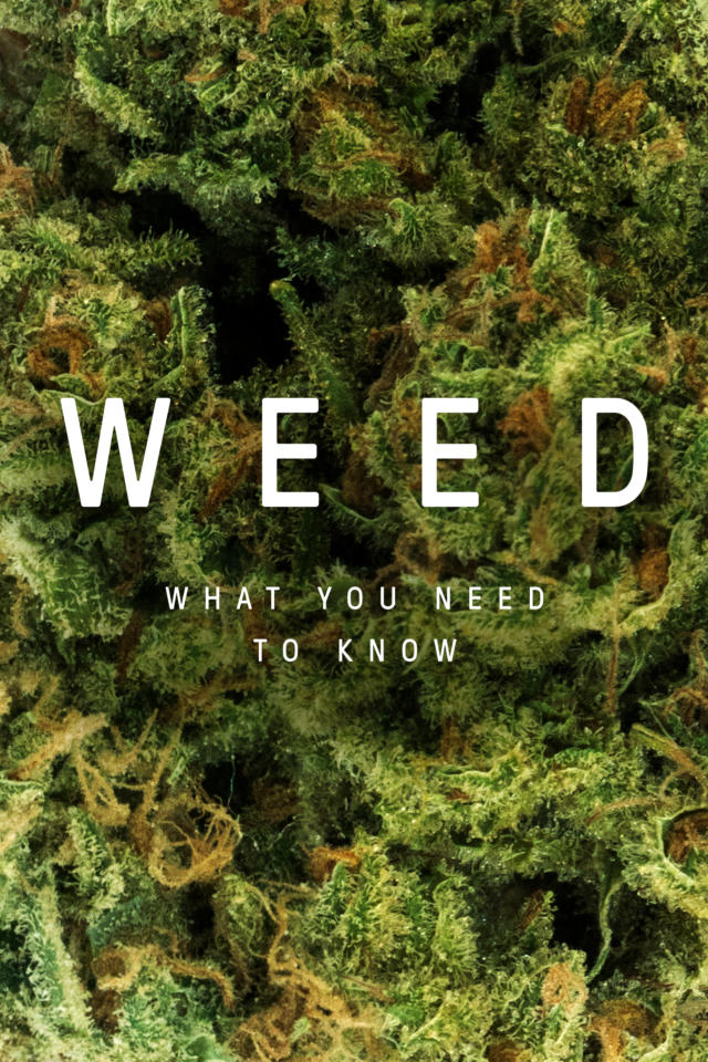 Weed: What You Need To Know